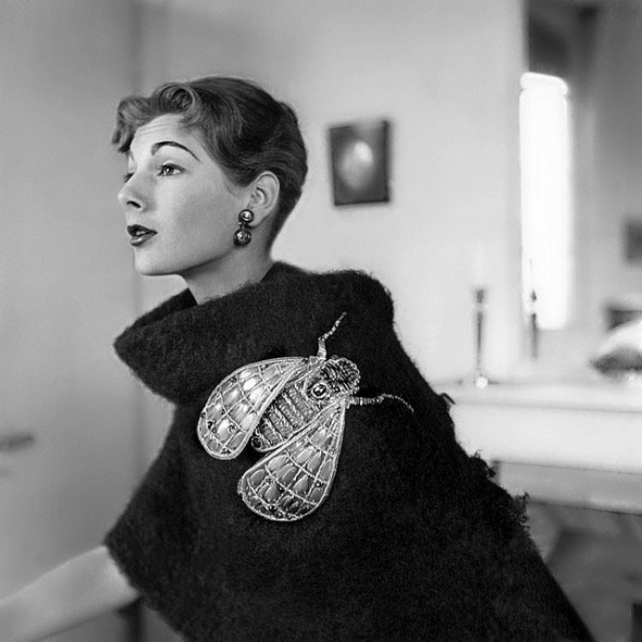 Schiaparelli's surreal giant fly brooch.