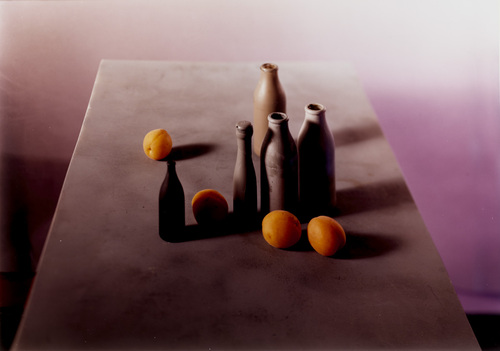 Untitled. Jan Groover. 1987.