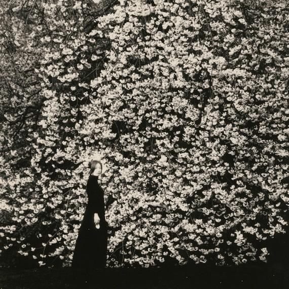 masao yamamoto, small things in silence