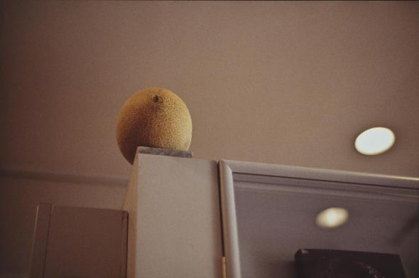 Melon, Gabriel Orozco, 1993